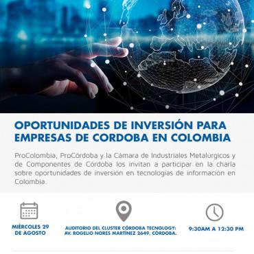 29/08 Charla /Sector TICs: OPORTUNIDADES DE INVERSIÓN EN COLOMBIA